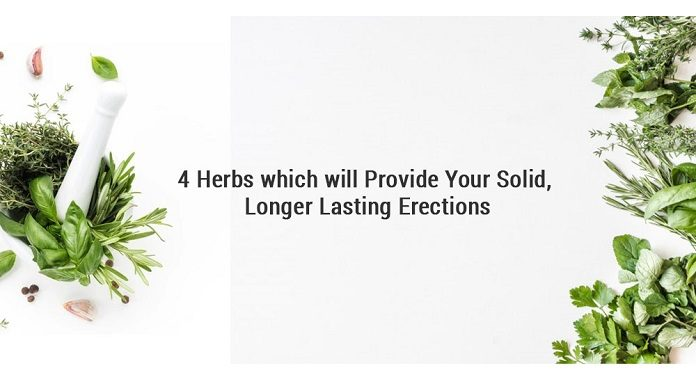 4 Herbs which will provide Your Solid, Longer Lasting Erections